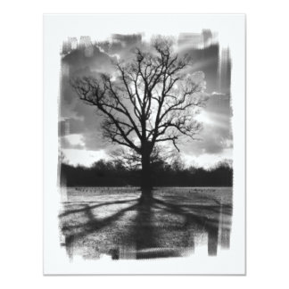 Barren Branches Tree Card