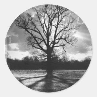 Barren Branches Tree Classic Round Sticker