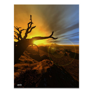 Barren Land Poster