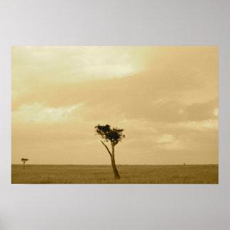 Barren Landscape - Single Tree Poster