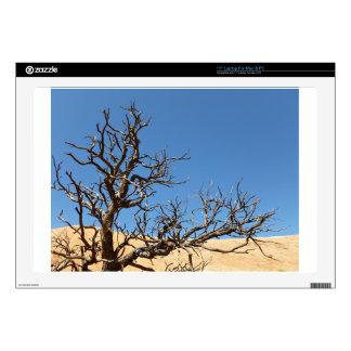 Barren tree in desert decals for laptops
