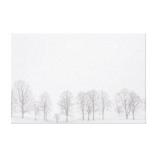 Barren trees in winter in snow white world canvas