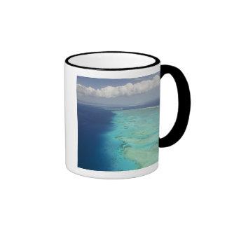 Barrera de arrecifes de Malolo de la isla de Malol Taza