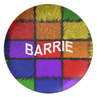 BARRIE ( male names ) Melamine Plate
