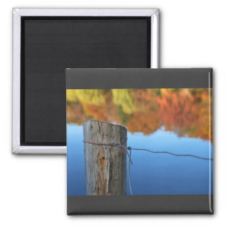 barrier to beauty 2 inch square magnet