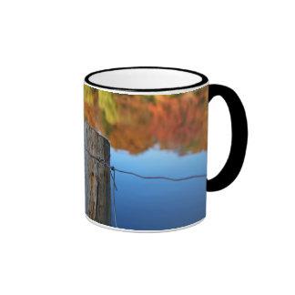barrier to beauty ringer mug