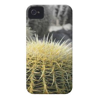 Barril de oro iPhone 4 carcasas