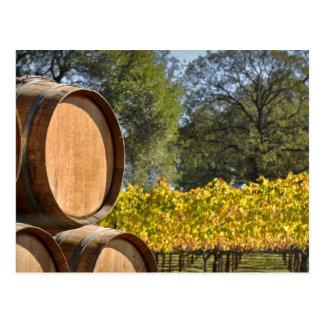 Barril de vino en caída del otoño postal