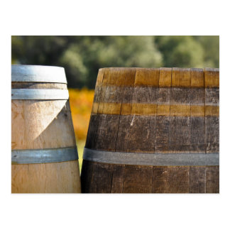 Barriles de vino en viñedo de la uva del otoño tarjeta postal