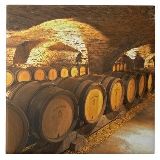 Barrles del roble en el sótano en Domaine Comte Tejas Cerámicas
