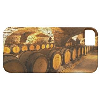 Barrles del roble en el sótano en Domaine Comte iPhone 5 Carcasas