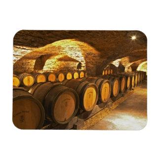 Barrles del roble en el sótano en Domaine Comte Imanes Rectangulares