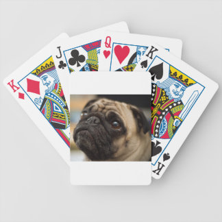 Barro amasado adorable barajas de cartas