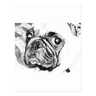 Barro amasado blanco y negro postal