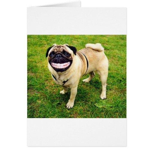 barro amasado de la sonrisa del perro lindo felicitación