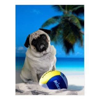 Barro amasado de Misha en la playa Postal