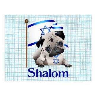 Barro amasado de Shalom con la bandera israelí - Postales
