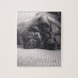 Barro amasado el dormir puzzle con fotos