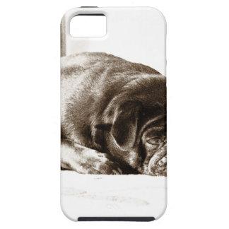 Barro amasado negro iPhone 5 coberturas