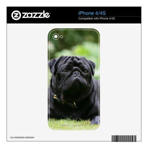 Barro amasado negro que coloca iPhone 4 calcomanías