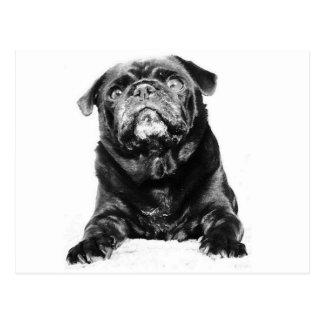 Barro amasado - negro y blanco negros del BARRO Postales