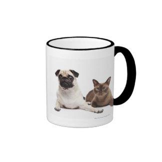 Barro amasado y gato birmano tazas