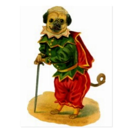 barro-perro-vestido-para arriba postal
