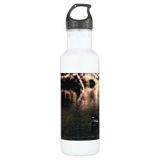 Barrow's Gold-en-eye 01 Stainless Steel Water Bottle