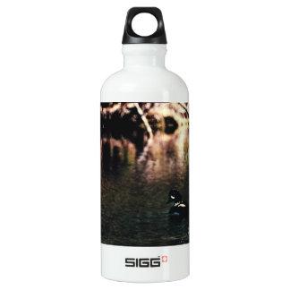 Barrow's Gold-en-eye 01 Water Bottle