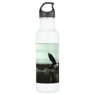 Barrow's Gold-en-eye 02 Stainless Steel Water Bottle