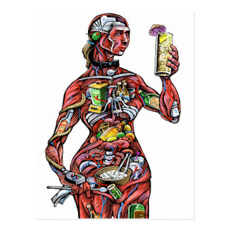 Bartender Anatomy (female) Postcard