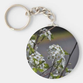 Bartlett Pear Tree Flowers Basic Round Button Keychain