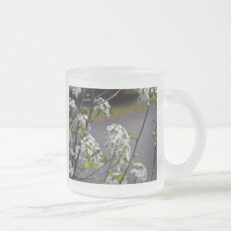Bartlett Pear Tree Flowers Frosted Glass Coffee Mug