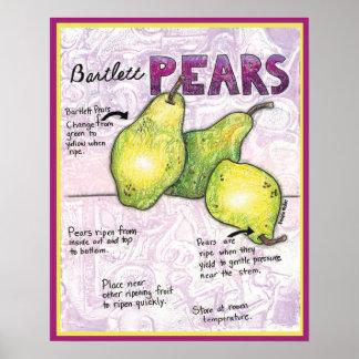 Bartlett Pears Poster