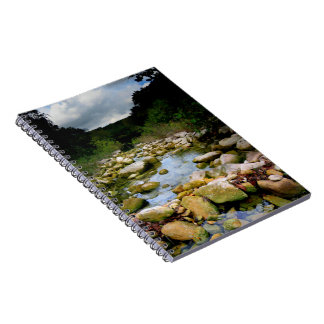 Barton Creek 5 - Austin Texas Spiral Notebook