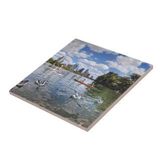Barton Creek at Lady Bird Lake - Austin, Texas Tile