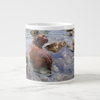 Barton Creek Dog Paparazzi - Austin Texas Giant Coffee Mug