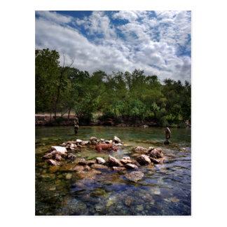 Barton Creek Dog Swimming Hole - Austin Texas Postcard