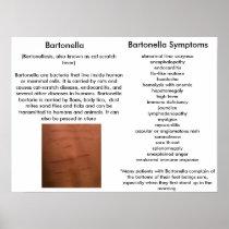 Bartonella Symptoms Educational Poster