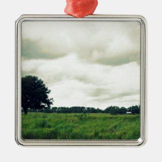 Bartow Highway Metal Ornament