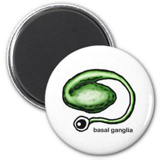 Basal Ganglia 2 Inch Round Magnet