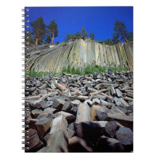 Basalt Formations of Devils Postpile Notebook