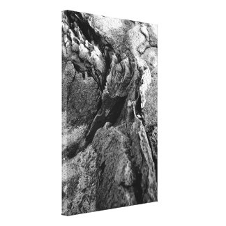 Basalt rocks canvas print