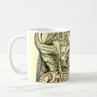 Base de la anatomía del vintage del externo del taza de café