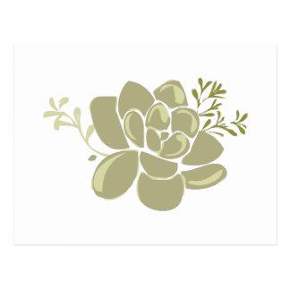 Base de los Succulents Tarjetas Postales