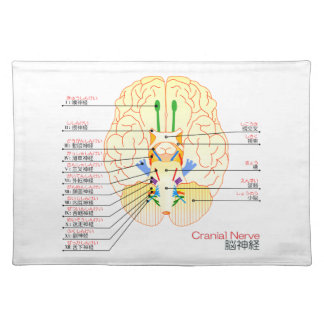 base of brain picture japanese(furigana) cloth placemat