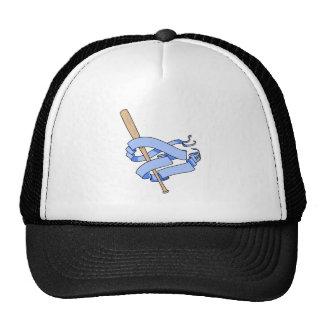 baseball bat pennant hat