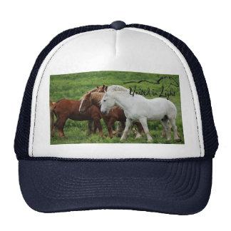 Baseball Cap Trucker Hat