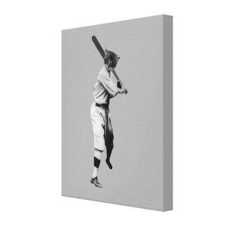 Baseball Cat Canvas Print