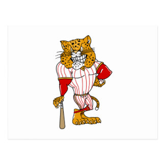 Baseball Cat Postcard
